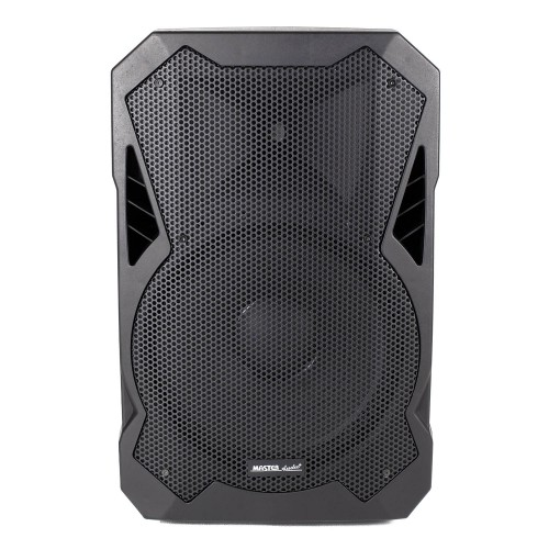 BN15PW AMPLIFIED 2-way speaker with multimdial reader
