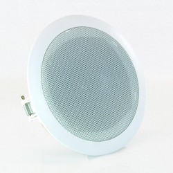 S165NW Ceiling wall speaker